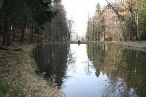 mittlerer Schwimmbachteich